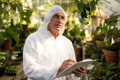 Male scientist inspecting in greenhouse. Male scientist writing on clipboard while inspecting in greenhouse Stock Photography