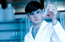 Male scientist looking at an Erlenmeyer flask Stock Photos