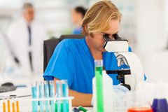 Male scientist microscope Royalty Free Stock Image