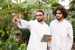 Male scientist pointing while standing by coworker. Outside greenhouse Stock Photos