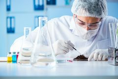 The male scientist researcher doing experiment in a laboratory Stock Images