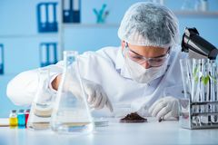 The male scientist researcher doing experiment in a laboratory Royalty Free Stock Photography
