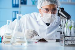 The male scientist researcher doing experiment in a laboratory Stock Image