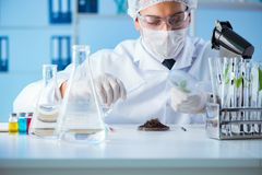 The male scientist researcher doing experiment in a laboratory Royalty Free Stock Image