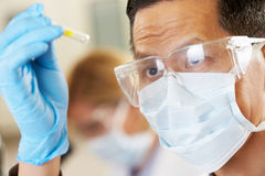 Male Scientist Studying Test Tube In Laboratory. Wearing Mask Stock Photography