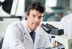 Male Scientist Using Microscope In Lab Royalty Free Stock Photography