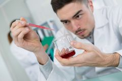 Male scientist using pipette. Scientist Royalty Free Stock Image