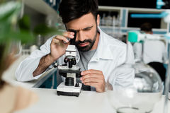 Male scientist in white coat working with microscope in chemical lab Royalty Free Stock Photography