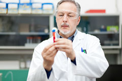 Male scientist at work in a laboratory. Researcher at work in a laboratory Stock Photo