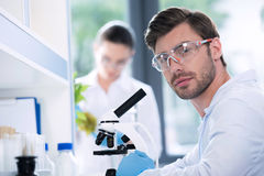 Male scientist during work at modern biological laboratory. Young male scientist during work at modern biological laboratory Royalty Free Stock Photo