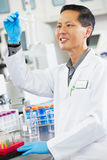 Male Scientist Working In Laboratory. Smiling Stock Image