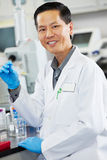 Male Scientist Working In Laboratory. Smiling Royalty Free Stock Photos