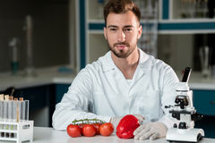 Male scientist working with vegetables and looking at camera in laboratory. Handsome male scientist working with vegetables and looking at camera in laboratory Royalty Free Stock Image