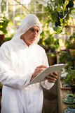 Male scientist writing on clipboard while examining plants. At greenhouse Royalty Free Stock Images