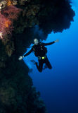 Male scuba diver. Man scuba diver having fun on dive Royalty Free Stock Image