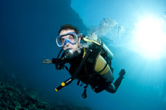 Male scuba diver. Swims in clear blue water Royalty Free Stock Images