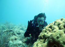 Male scuba diver on exotic coral reefs. With huge brain coral Stock Images