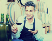 Male seller holding glass on wine in cellar. Cheerful smiling male seller wearing apron holding glass on wine tasting in cellar Royalty Free Stock Image