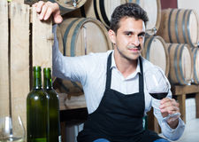 Male seller holding glass on wine in cellar. Male seller wearing apron holding glass on wine tasting in cellar Royalty Free Stock Photo