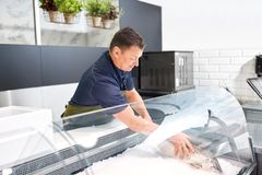 Male seller putting trout to fridge at fish shop. Food sale, small business and people concept - male seller putting trout to fridge at fish shop Stock Images