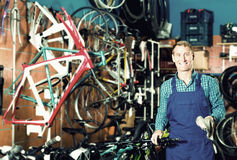 Male seller in uniform picking new bicycle wheel hands Stock Image