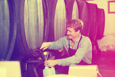 Male seller in wine cellar Royalty Free Stock Images