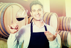 Male seller in wine store. Cheerful man seller in apron holding glass of red wine in shop with woods Royalty Free Stock Images
