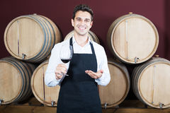Male seller in wine store. Portrait of positive man seller in apron holding glass of red wine in shop with woods Stock Image