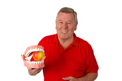 Male senior with teeth modell Royalty Free Stock Photo