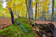 Male set - knives and watches. Black knife and smart watch in au. Tumn forrest Royalty Free Stock Photography
