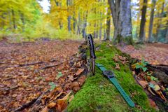 Male set - knives and watches. Black knife and smart watch in autumn forrest.  Royalty Free Stock Photos