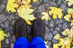 Male shoes on leaves. Male shoes standing on asphalt road covered with fallen autumn leaves Stock Image