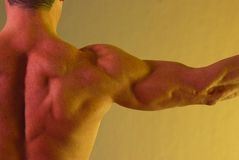 Male shoulder muscle yellow. Male shoulder muscle on lavender background arm extended strait to the side Stock Photos