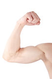 Male shoulder on white background Stock Images