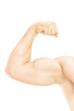 Male showing his arm muscles. Isolated on white background Stock Photography