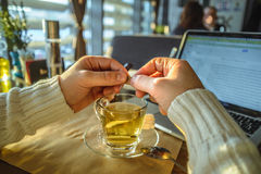 Male sitiing in caffe drinking tea and working on laptop. In front of window Royalty Free Stock Images