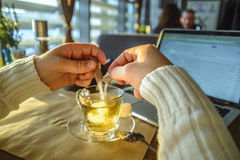 Male sitiing in caffe drinking tea and working on laptop. In front of window Royalty Free Stock Photo