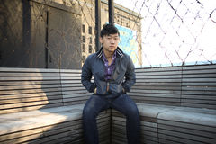 Male sitting on bench Stock Image