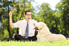 Male sitting on a grass and playing with labrador retriver in a. Male with tie and glasses sitting on a green grass and playing with labrador retriver in a park Royalty Free Stock Photography