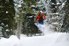 Male skier jumping high in forest. Male skier jumping high in the forest Royalty Free Stock Images