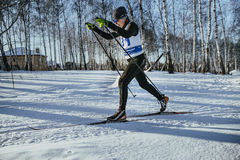 Male skier middle-aged of classic style in winter woods on sports race Royalty Free Stock Image