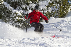 Male skiing forest. Man is skiing between trees Stock Photo