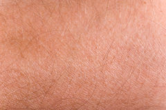 Male skin closeup. Human skin closeup on male grip with hairs Royalty Free Stock Photo