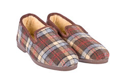 Male slippers Stock Image