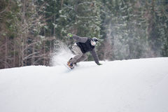 Male snowboarder jumping over the slope in winter day. Male snowboarder rides over fresh snow powder on the slope in winter with snow-covered firs in background Royalty Free Stock Photos