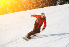 Male snowboarder slides down from the mountain in winter day. Overlooking the snowy slope and snow-covered fir at a winter resort Stock Images