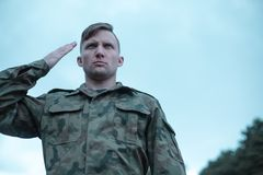 Male soldier saluting Stock Images