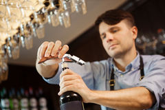 Male sommelier open wine bottle with corkscrew. Waiter with bottle of alcohol beverage and bottle-screw in hands. Bartender concentrated on uncork of elite Stock Photography