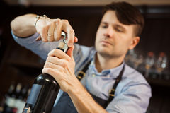 Male sommelier open wine bottle with corkscrew. Waiter with bottle of alcohol beverage and bottle-screw in hands. Bartender concentrated on uncork of elite Royalty Free Stock Photos