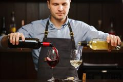 Male sommelier pouring red and white wine into long-stemmed wineglasses Royalty Free Stock Photo